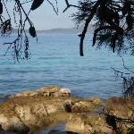 Pine Beach Pakostane Foto