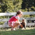 Kinderfreundliche Tierwelt