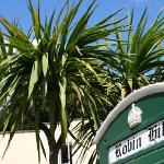 Sun and Palm Trees - the English Riviera!