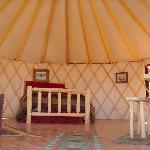 This is the inside of the yurt and shows the queen bed with full trundle underneath.