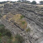 Very distinct from the sandstone cliffs along the southern Victorian coast