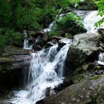 Amicalola Falls State Park ภาพถ่าย