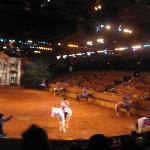 Dixie Stampede only  pic that showed up good
