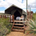 Photo of Le Petit Karoo Ranch
