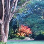 Kubota Garden is a Treasure