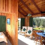 Alpine lounge overlooking the bay