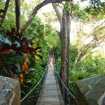 Pont suspendu entre la villa et la réception de l'hotel