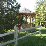 Gazebo in the Trees