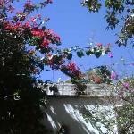 Casita de las Flores Foto