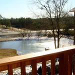 Photo of Mena Mountain Resort