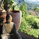 Buddah with a view