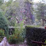 La vista desde la entrada de la cabaña