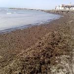 notre fameuse plage de sable fin: ah ah ah!!!