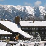 The Griz Inn - Fernie Alpine Resort