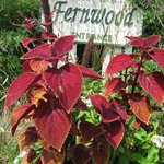 Fernwood Botanical Garden and Nature Preserve