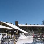 The Griz Inn at Fernie Alpine Resort