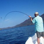 Photo of Papagayo Gulf Sport Fishing - North Pacific Tours