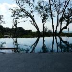 capella pool