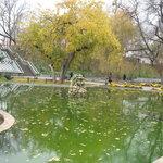 Salgir sity park