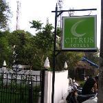 Citrus hotel logo