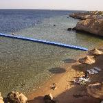 Quay at  Sharm club to take you out to the amazing marine life