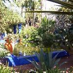 le jardin Majorelle magnifique