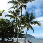 Beach in front of St. Regis Resort
