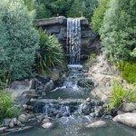 WWT London Wetland Centre Foto