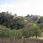 The foot hills of Mount Diablo 2008-11-09