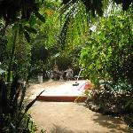 Banana's Garden Bed & Breakfast Foto