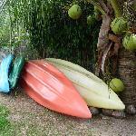 Kayacks gratuits