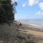 ポリリオ港付近の海岸