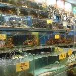 Unique Seafood Restaurant Jalan Kemajuan PJ