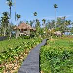 Bangsak Village Foto