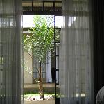 Courtyard view from room.