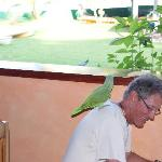 Harvey (our gracious host) he feeds the birds and the guests
