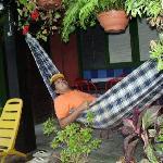 el rico clima de relajo en el hostel