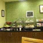 Fairfield Inn & Suites Dallas Las Colinas Photo
