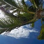 View from my beach chair