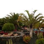 Lovely gardens of Villa Vik