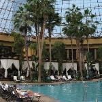 great pool under the dome with palms