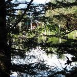 interior lake