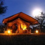 Mapito Camp Serengeti - the tents by night