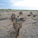 Elephant Ride - organised by hotel booking office