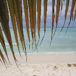 private island excursion