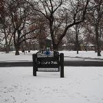 The Cheeseman Park