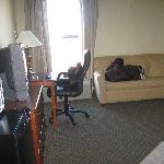 Sofa, Frig, Micro, Desk - Rm 319