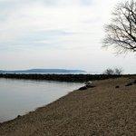 Zdjęcie Chesapeake Bay