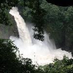 数鹿流ヶ滝