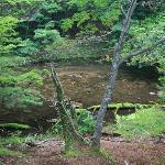 湯滝へ続く川